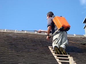 traitement hydrofuge de toiture Cestas